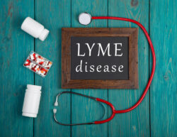 Electromagnetic treatment for Lyme disease can be a great addition to antibiotics and other medications