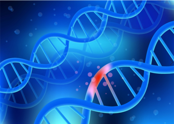 Genetic defects are among the most common cellular injury causes